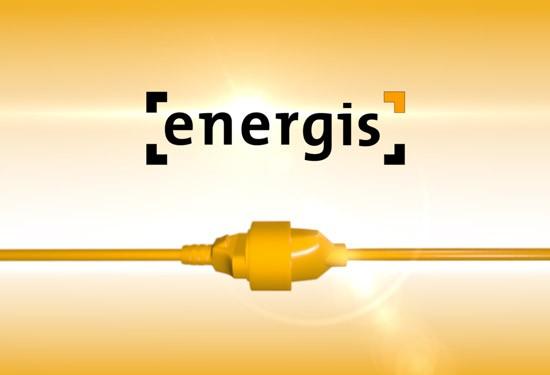 Energis Messestand 2013